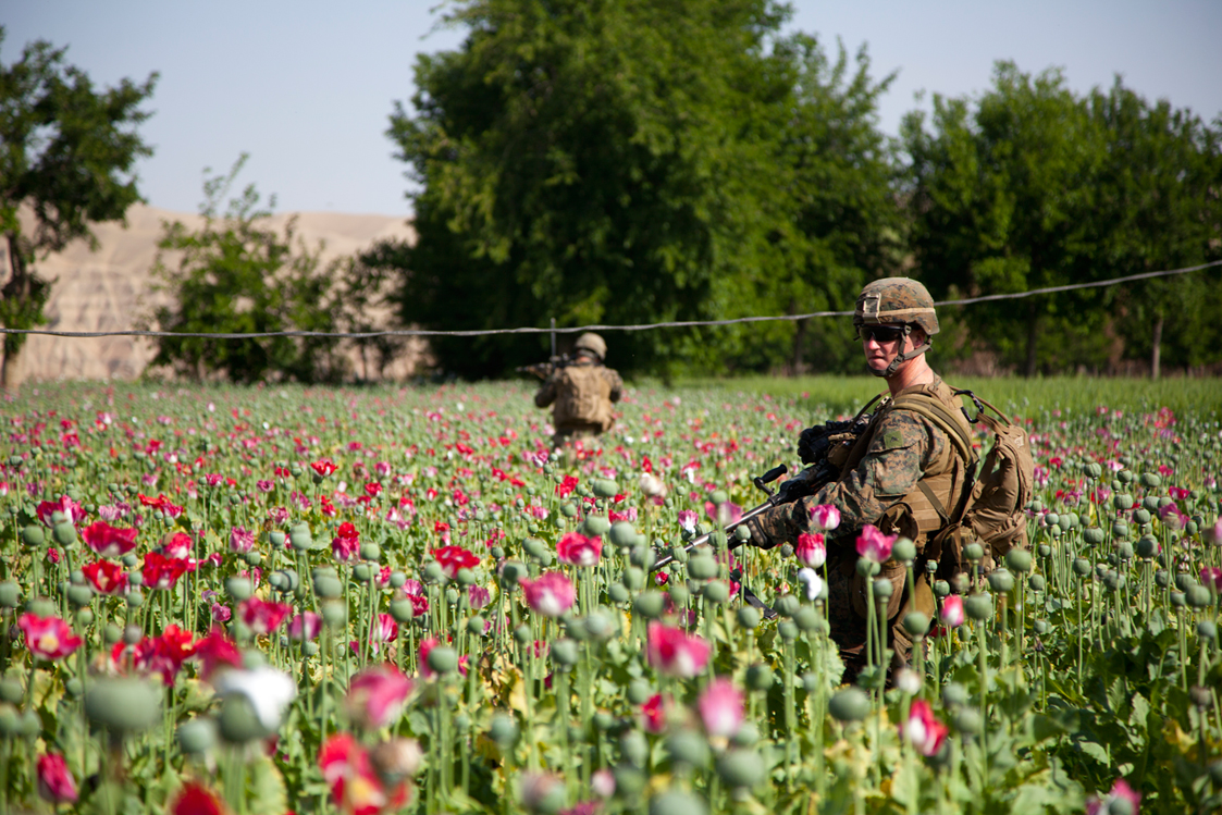 The True Power of the Afghan Drug Trade – Grounded Curiosity
